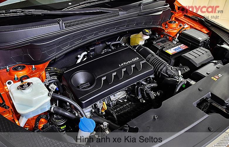 Kia Seltos có 2 tùy chọn động cơ 1.4L và 1.6L