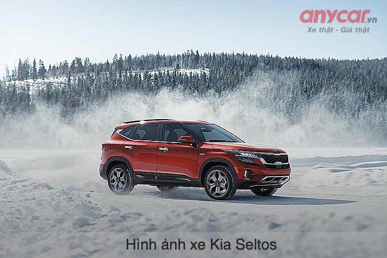 """Kia Seltos đang là mẫu xe """"hot"""" nhất phân khúc SUV 5 chỗ"""