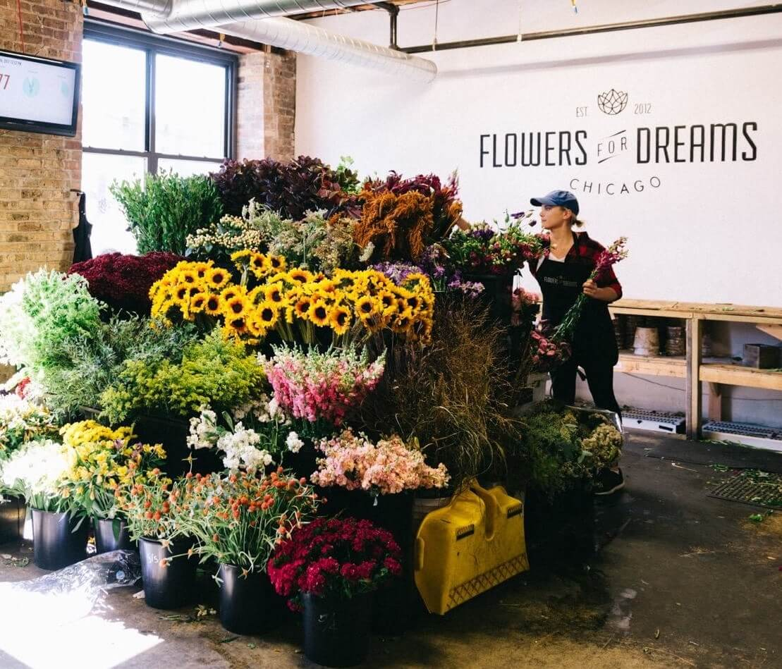 Impact :: Flowers for Dreams