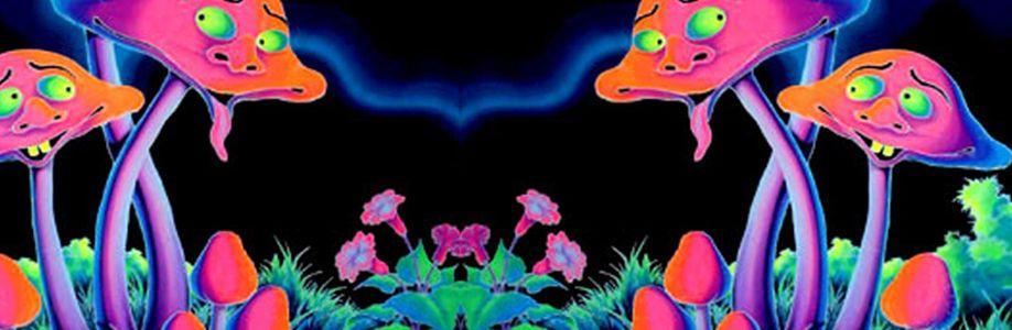 Kandi Meetup ~ Nocturnal Wonderland Cover Image