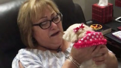 boy-surprises-grandma-puppy
