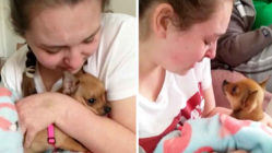 epilepsy-girl-receives-puppy