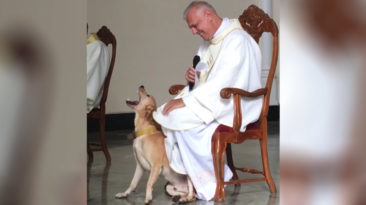 dog-and-priest