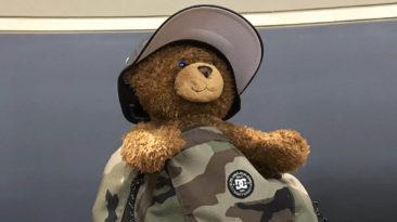 moms-voice-teddy-bear
