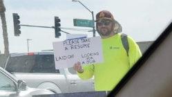 public-job-resume