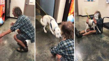 homeless-man-dog-reunion