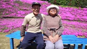 Japanese-husband-makes-garden-for-blind-wife-7