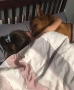 girl-dog-friendship