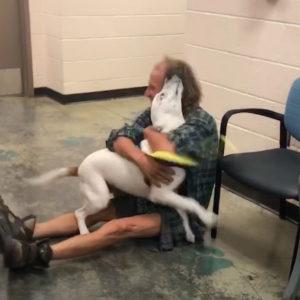homeless-man-dog-reunion-3