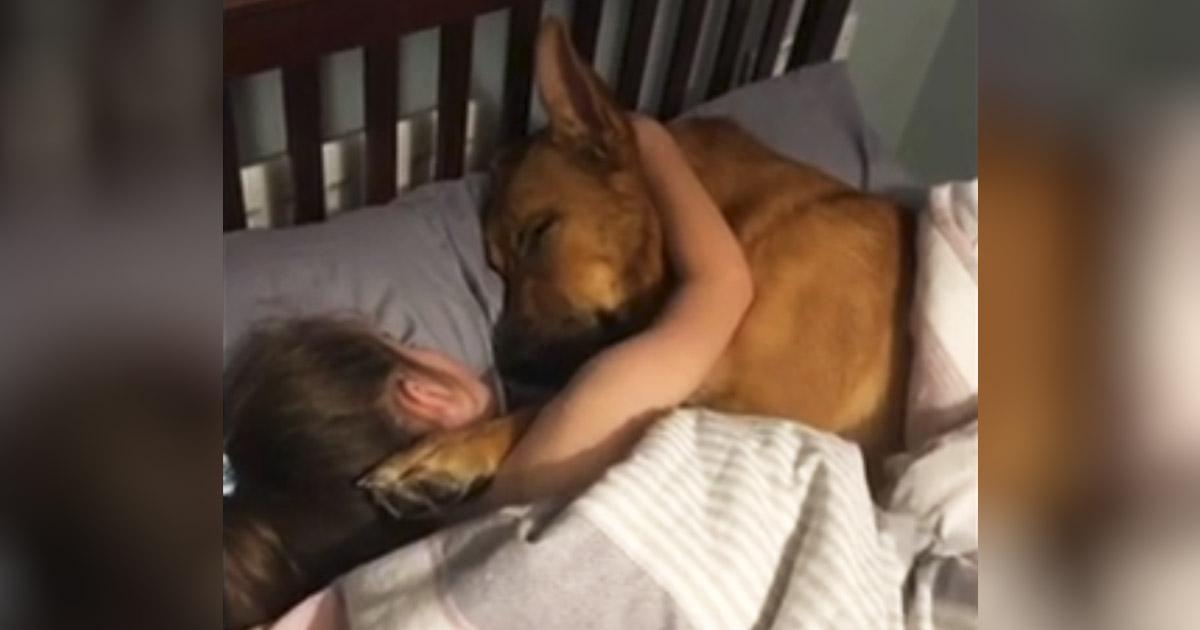 girl-and-dog-sleep-together