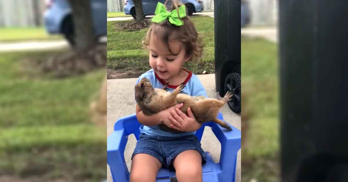 girl-cuddles-prairie-dog