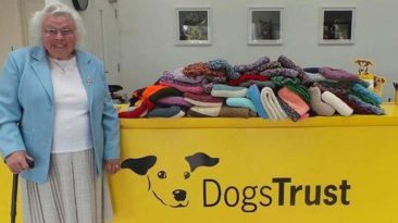 elderly-knits-clothes-for-shelter-dogs-main