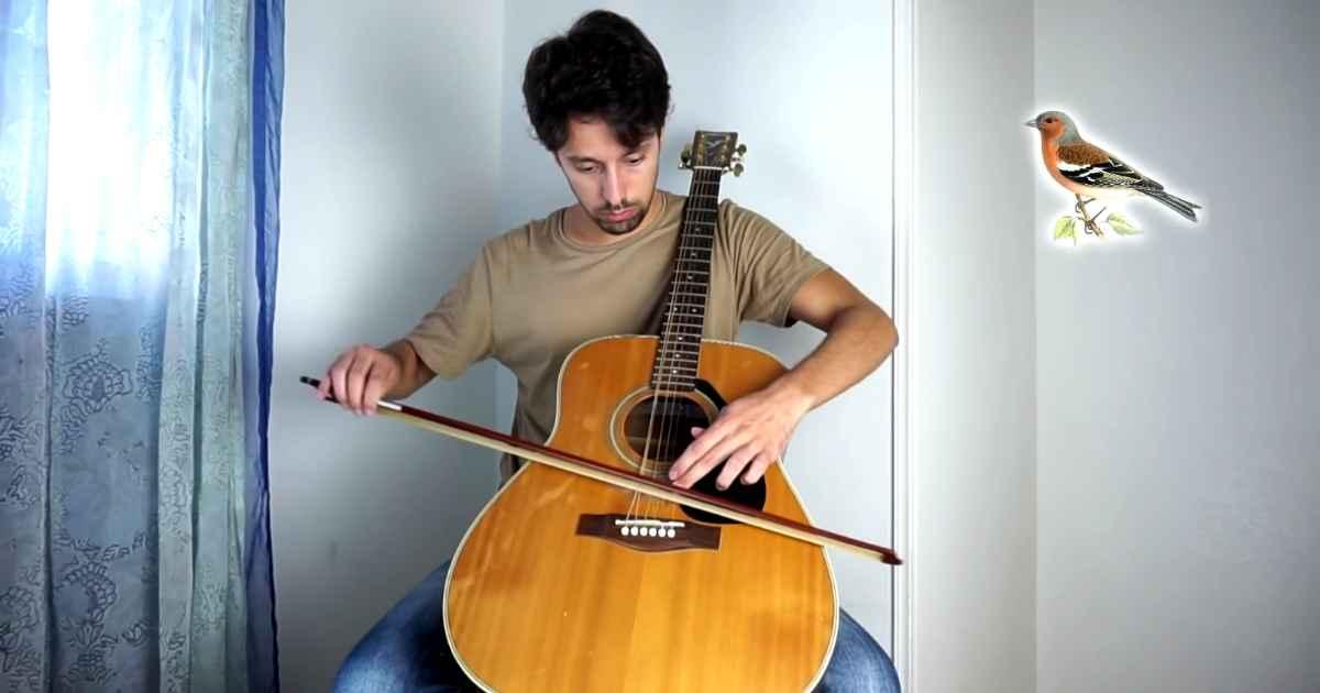 guitar-animal-sounds