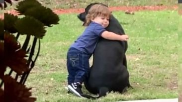 toddler-hug-dog