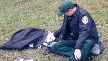 police-officer-keep-injured-dog-warm-coat
