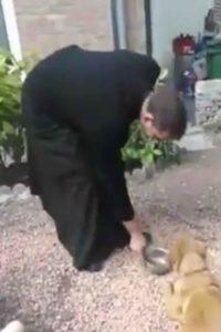 praying-dog