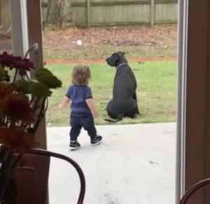 toddler-hug-dog-2