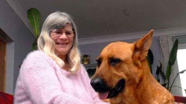 dog-smells-breath-saves-woman