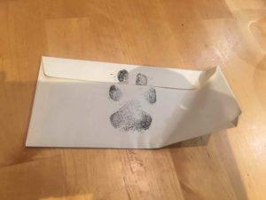 boys-dog-letter-3