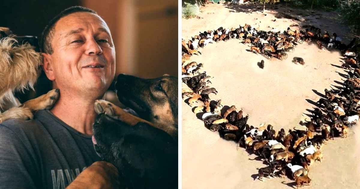 sasha-pesic-dog-rescue