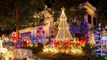 veteran-christmas-lights