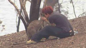 woman-saves-kangaroo-australia-fires