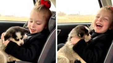 girl-with-cerebral-palsy-gets-puppy