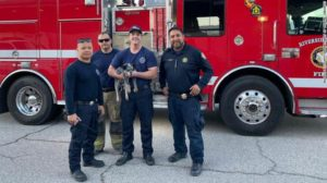 firefighters-rescue-dog
