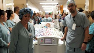 gwen-daigle-organ-donation