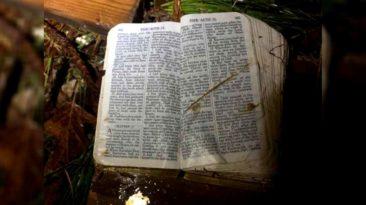 bible-unharmed-in-tornado