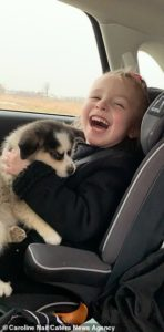 girl-with-cerebral-palsy-gets-puppy-2