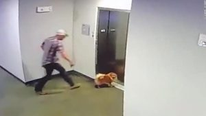 man-save-dog-elevator-2