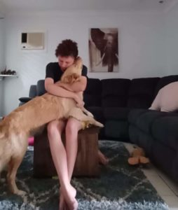 service-dog-helps-panic-attack-3