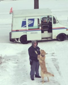 dog-waits-for-mailman-1