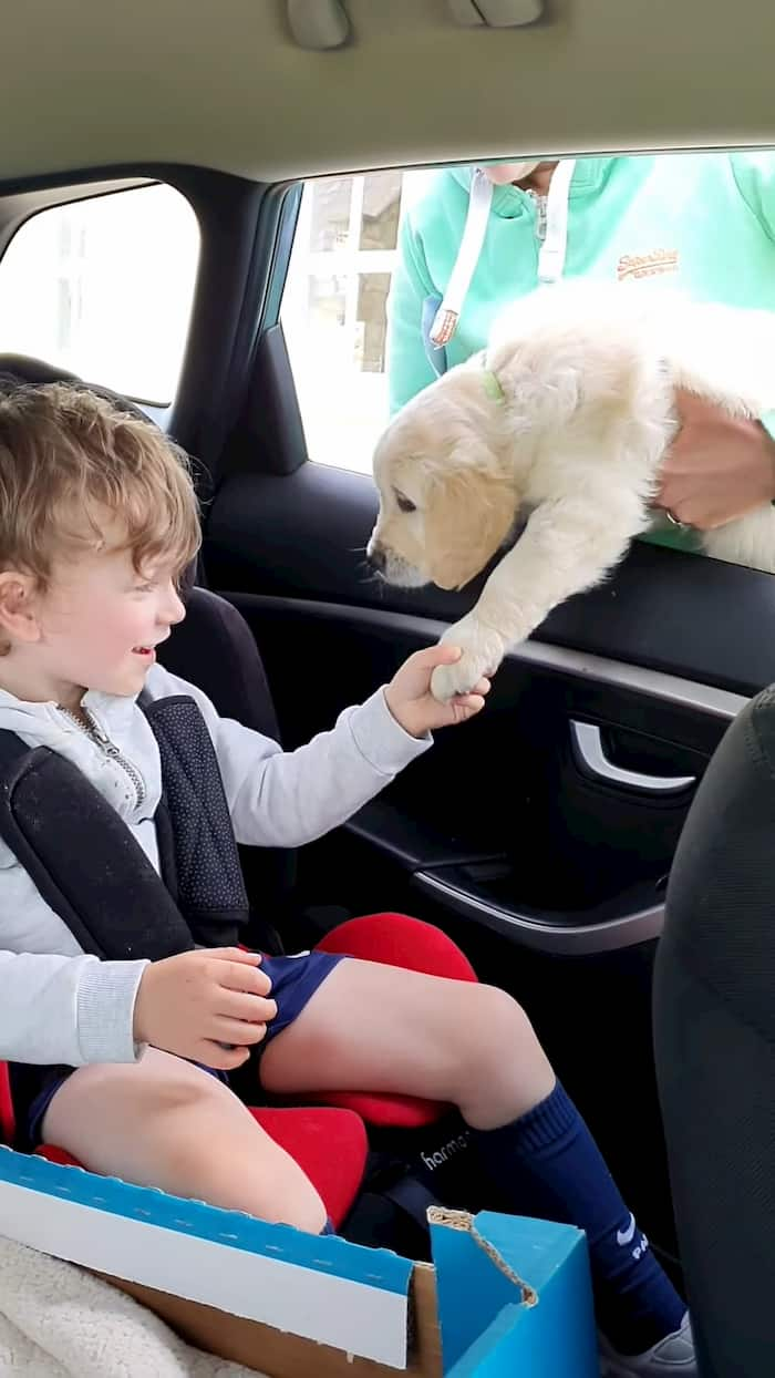 nonverbal-boy-with-autism-gets-puppy-3