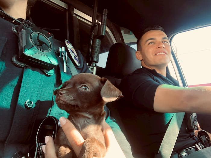 officer-adopts-puppy-2