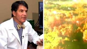 dr-eben-alexander-proof-of-heaven