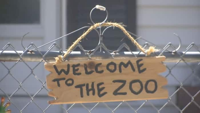 front-zoo
