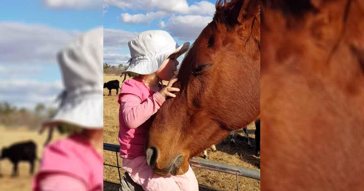 little-girl-serenades-horse