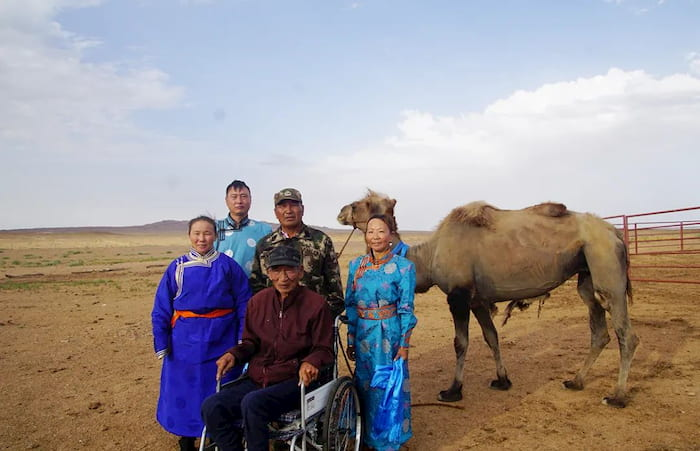 camel-returns-to-owner-2