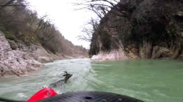kayaker-saves-deer