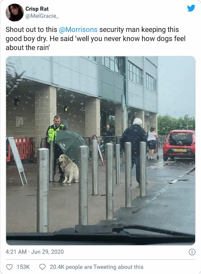 officer-protects-dog-from-rain