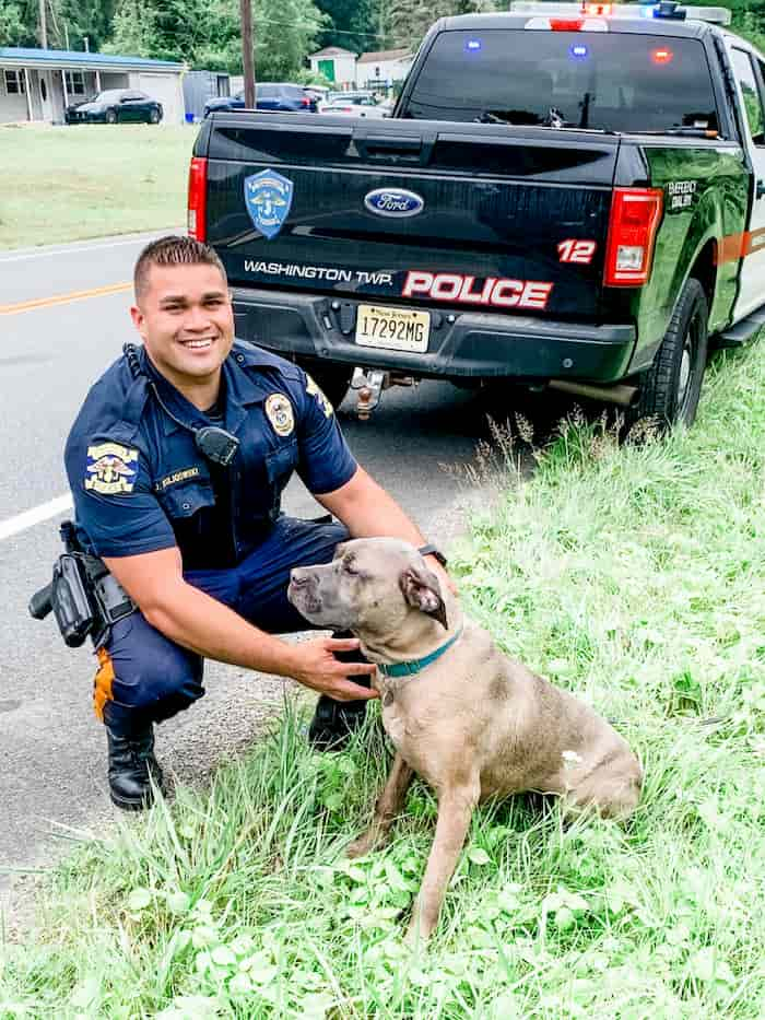 police-officer-rescues-dog-from-drowning