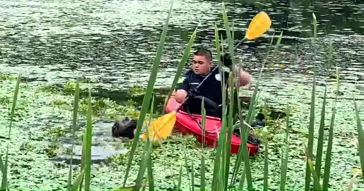 police-officer-rescues-drowning-dog