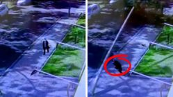 woman-escapes-falling-street-pole