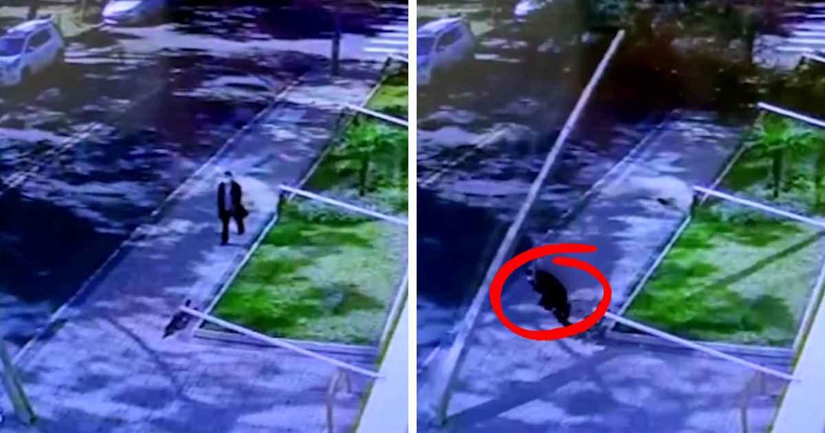 woman-escapes-falling-street-pole