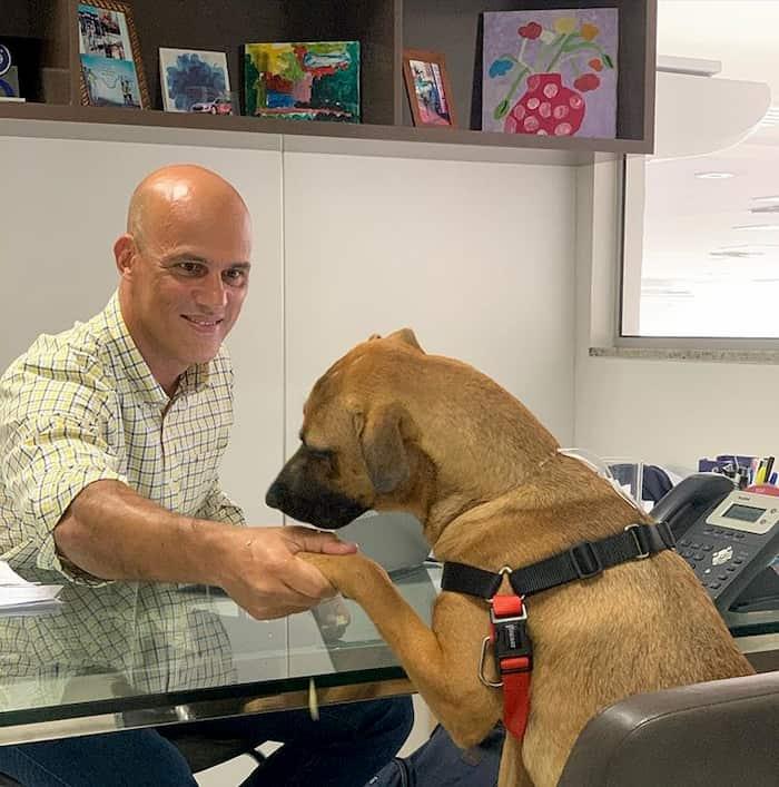 hyundai-gives-job-to-dog-4
