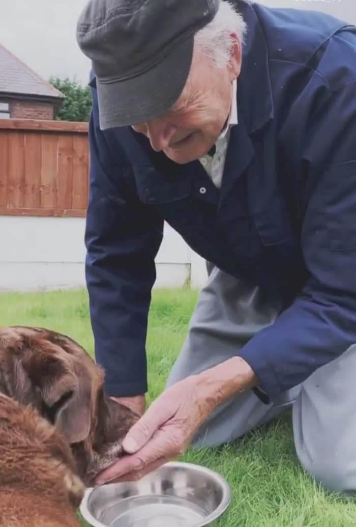 90-year-old-says-goodbye-to-dying-dog-3