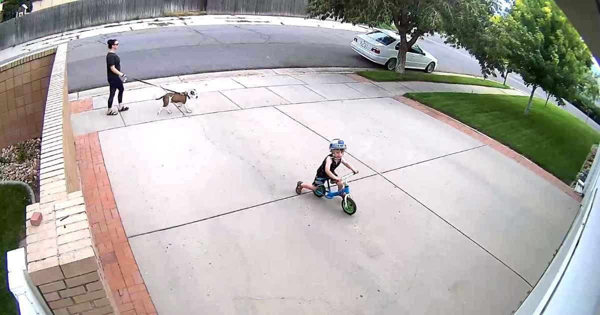 boy-in-driveway
