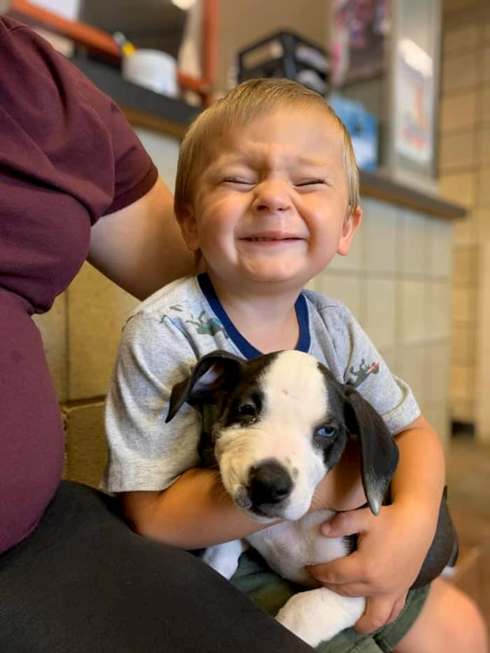 boy-with-cleft-lip-gets-puppy-with-same-condition-bentley-4
